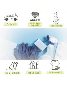 Kit Casa Ecologica:...